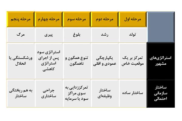 مراحل چرخه حیات سازمان