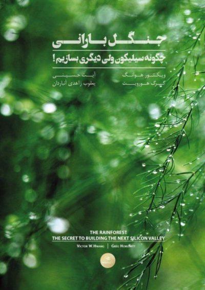 جنگل بارانی چگونه سیلیکون ولی دیگری بسازیم